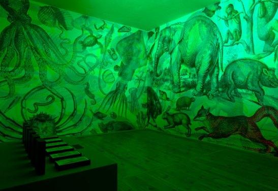 Alvise Vivenza, Johanssen Gallery, Berlin, 2010-2011 RGB Carnovsky Exhibition 1